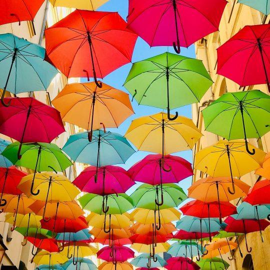 https://accentuagroup.nl/wp-content/uploads/2020/07/umbrellas-540x540.jpg